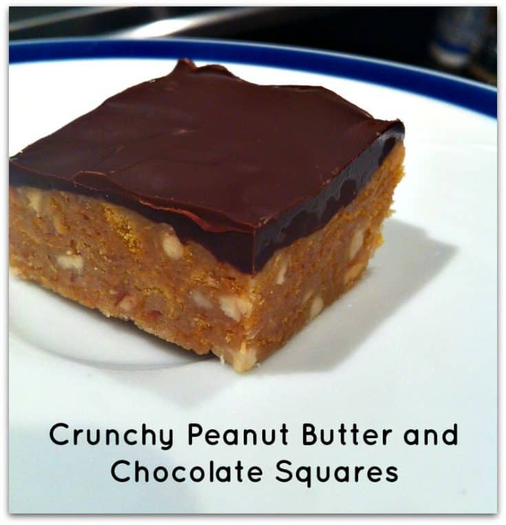 No Bake Peanut Butter and Chocolate Squares