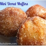 Baked Mini Donut Muffins