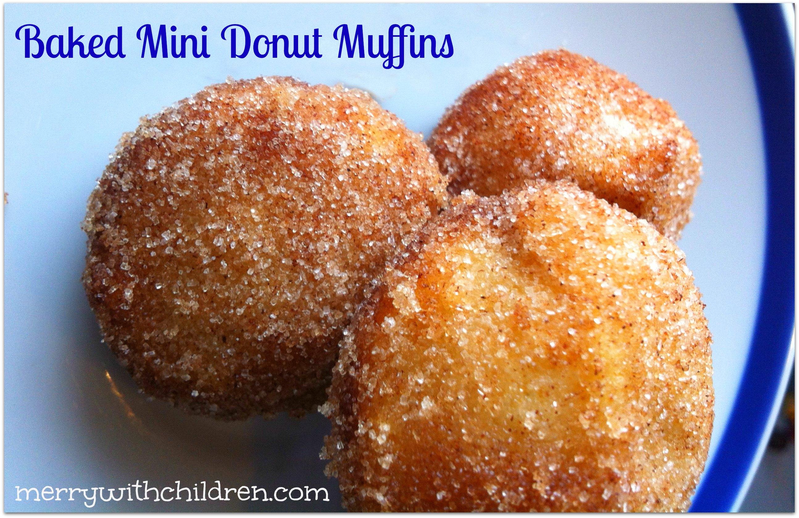 Calgary Regional Cuisine – Stampede Mini Donuts w/Recipe – The ...