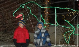 Zoolights at the Calgary Zoo – Win a Family 4 Pack!