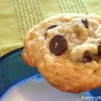 Ultimate Chocolate Chip Cookies - A Great Bake Sale Treat