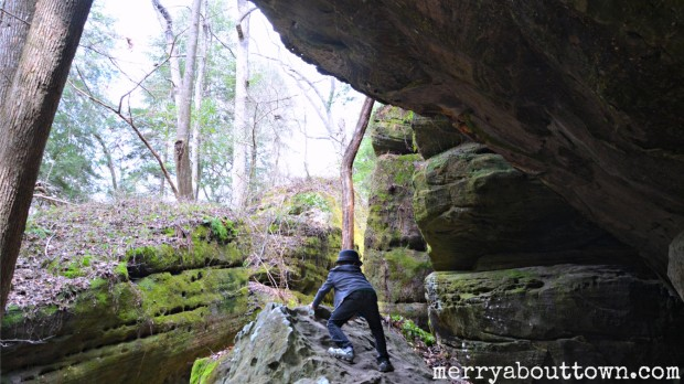Dismals Canyon Alabama - MerryAboutTown