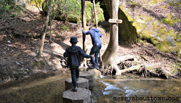 Fording the Creek at Dismals Canyon Alabama - Merry About Town.jpg