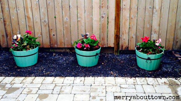 Pretty New Flower Pots - Merry About Town