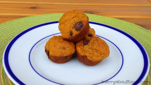 Pumpkin-Chocolate-Chip-Mini-Muffins-Merry-About-Town