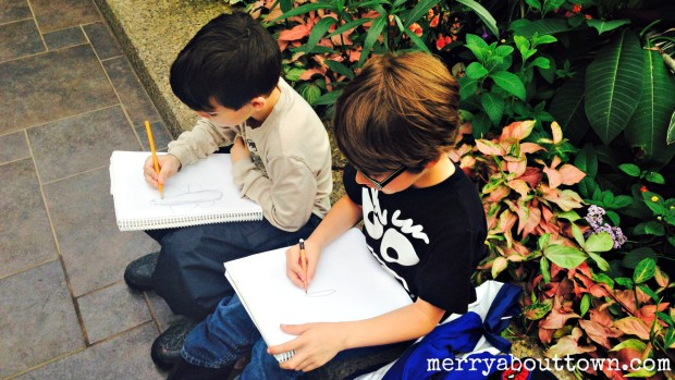 Drawing Butterflies at the Calgary Zoo - Merry About Town