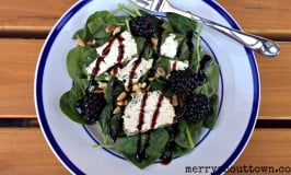 Blackberry Goat Cheese Salad Recipe
