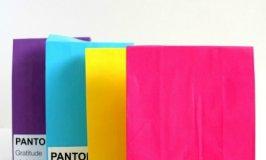 Pantone Loot Bags