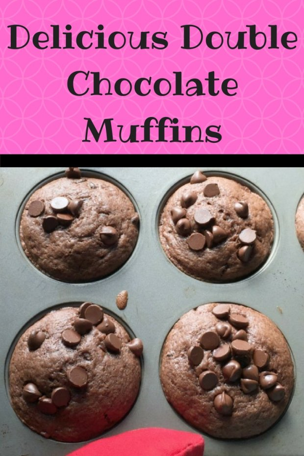 Delicious Double Chocolate Muffins