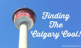 Finding the Calgary Cool – June 2