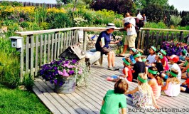 12 Family Fun Summer Road Trips from Calgary