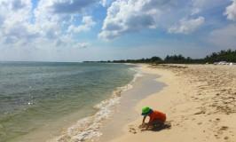 Untouched Beauty at Punta Sur Park in Cozumel