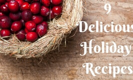9 Delicious Holiday Meal Recipes