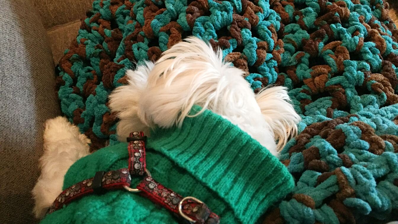 Snuggly Crochet Blanket