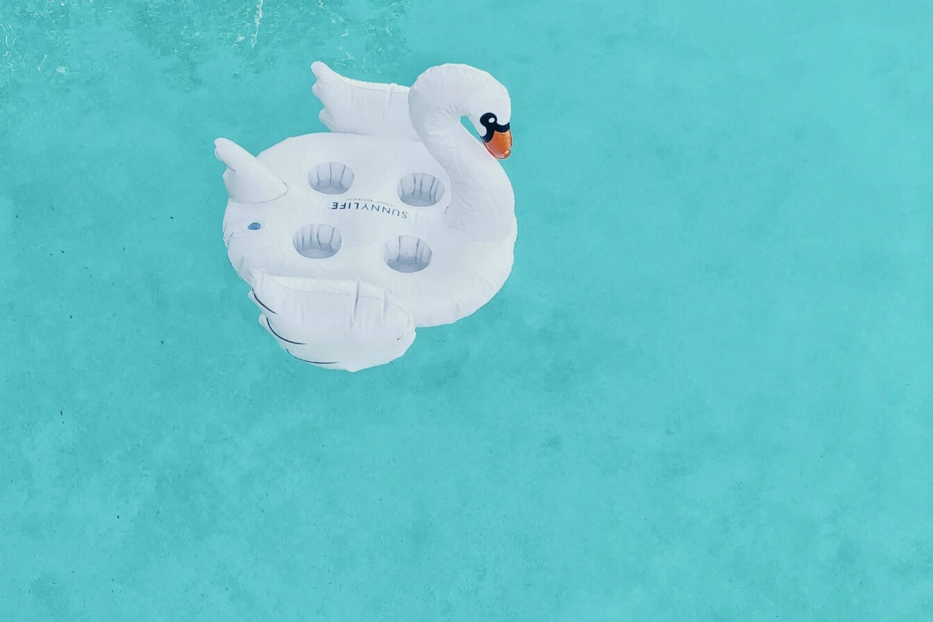 White swan in a pool - birthday pool parties