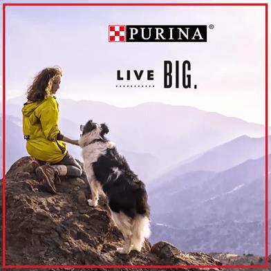 Purina Live Big