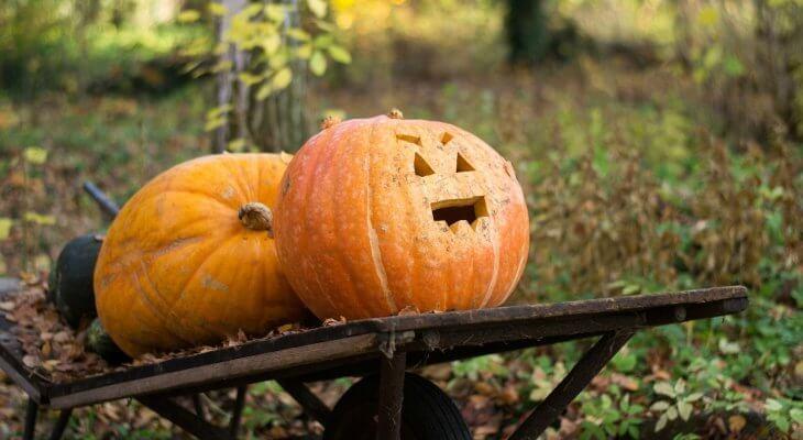 5 Inexpensive Halloween Decorations!