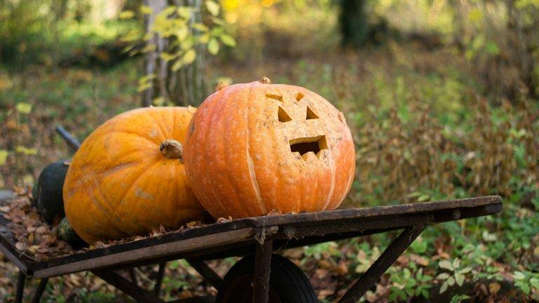 Inexpensive Halloween Decorations