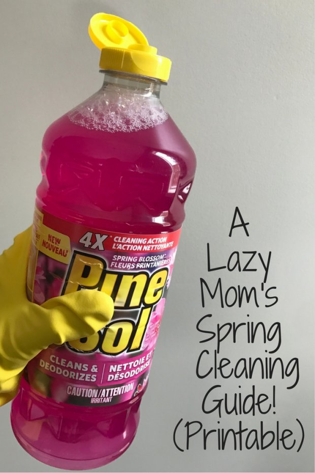 A Lazy Mom's Spring CleaningGuide!(Printable)