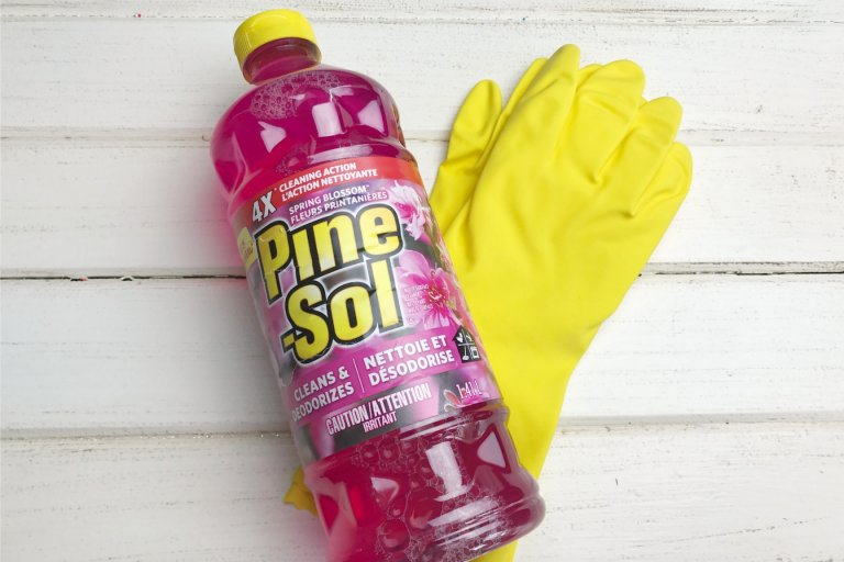 Spring Cleaning with Pine-Sol Spring Blossom