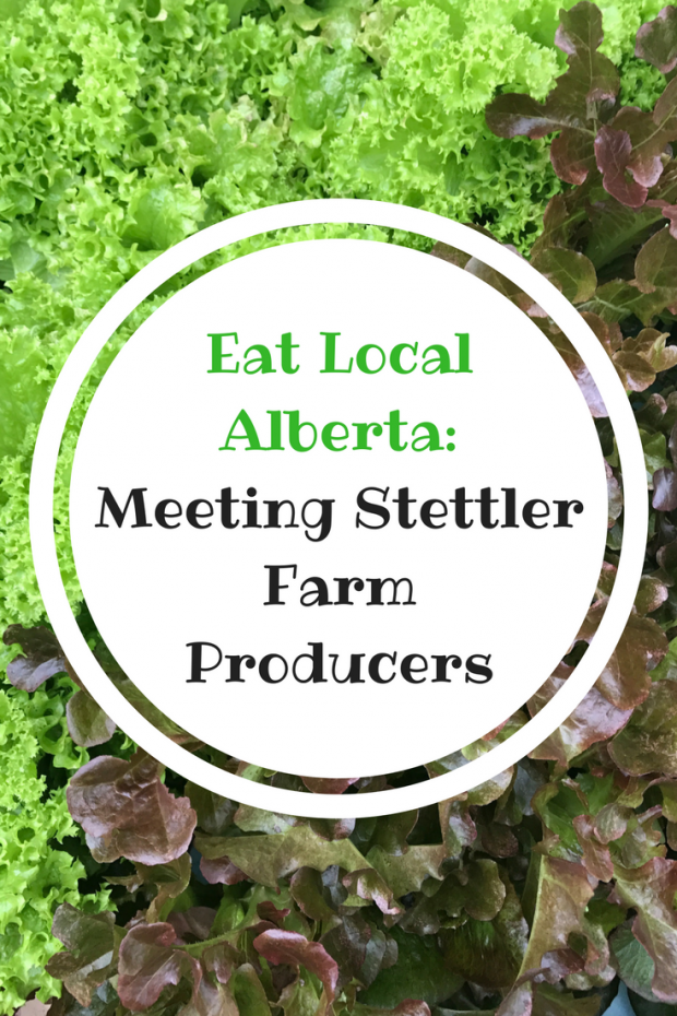 Eat Local Alberta- Meeting Stettler Farm Producers