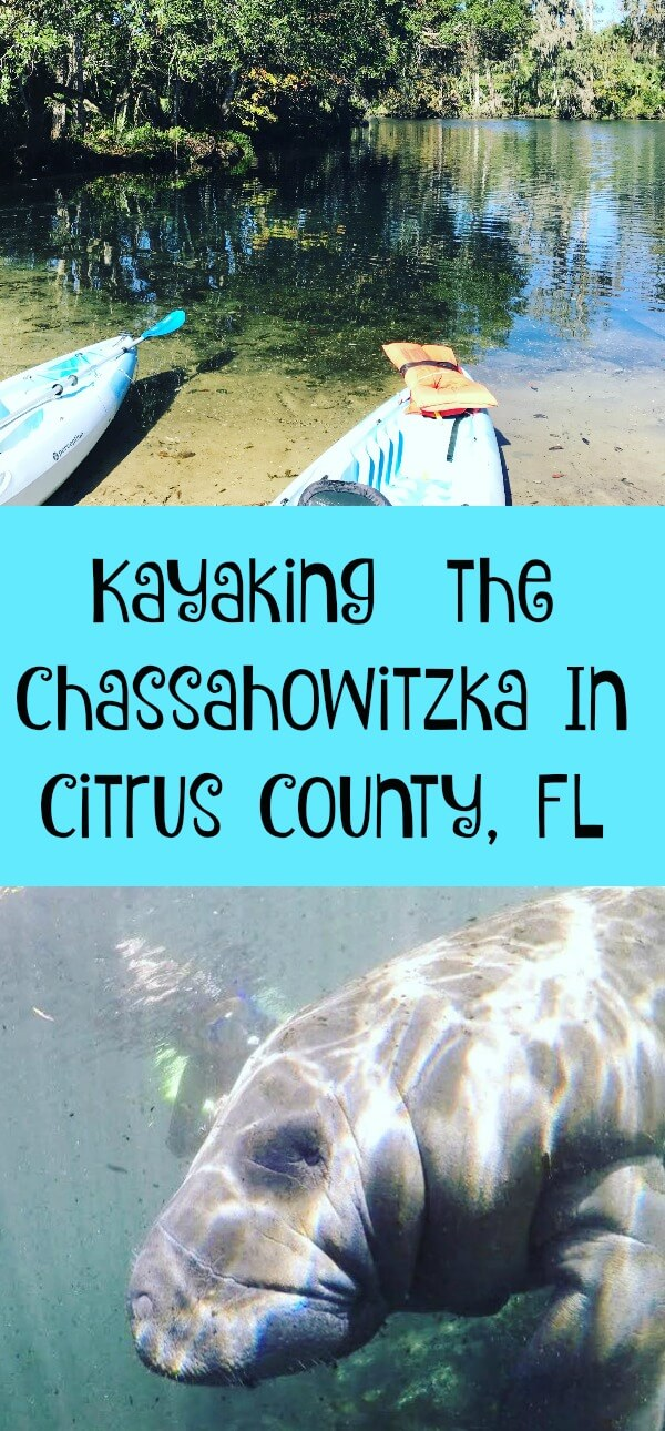 Kayaking Down the Chassahowitzka In Citrus County, Florida