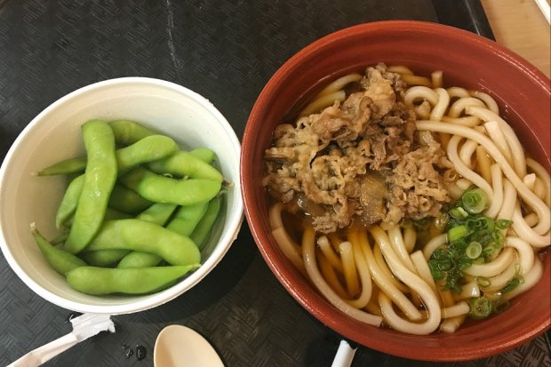 Edamame and Beef Udon from the Japanese Pavilion