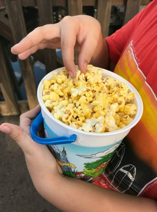 Walt Disney World Popcorn