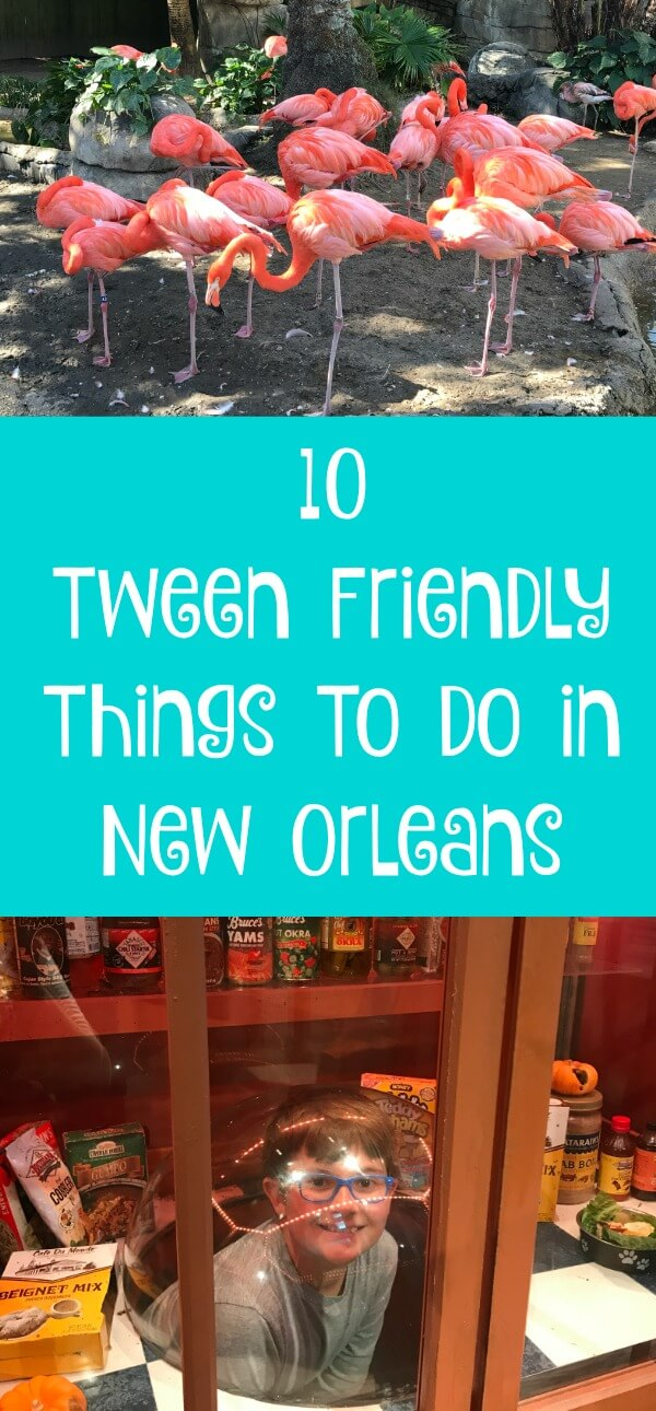 10 Tween Friendly Things To Do in New Orleans