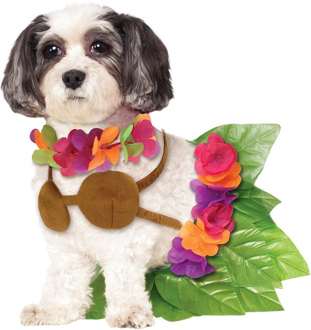 hula girl small dog costume