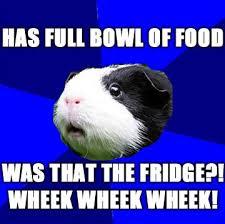 full bowl of food