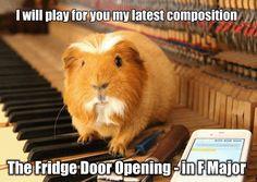 fridge opening
