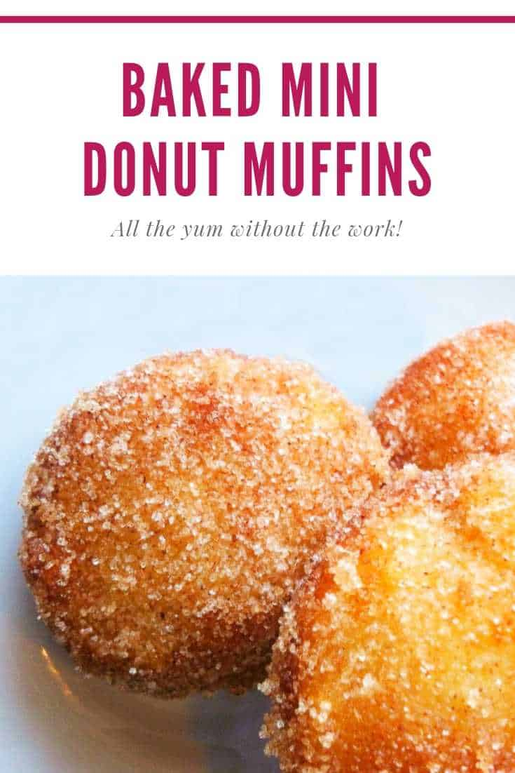 Stampede Mini Donuts Muffins Recipe Merry About Town