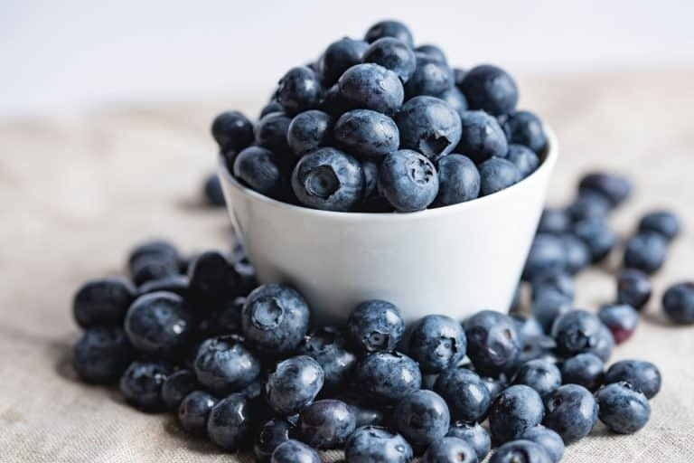 Blueberry and Saskatoon recipes