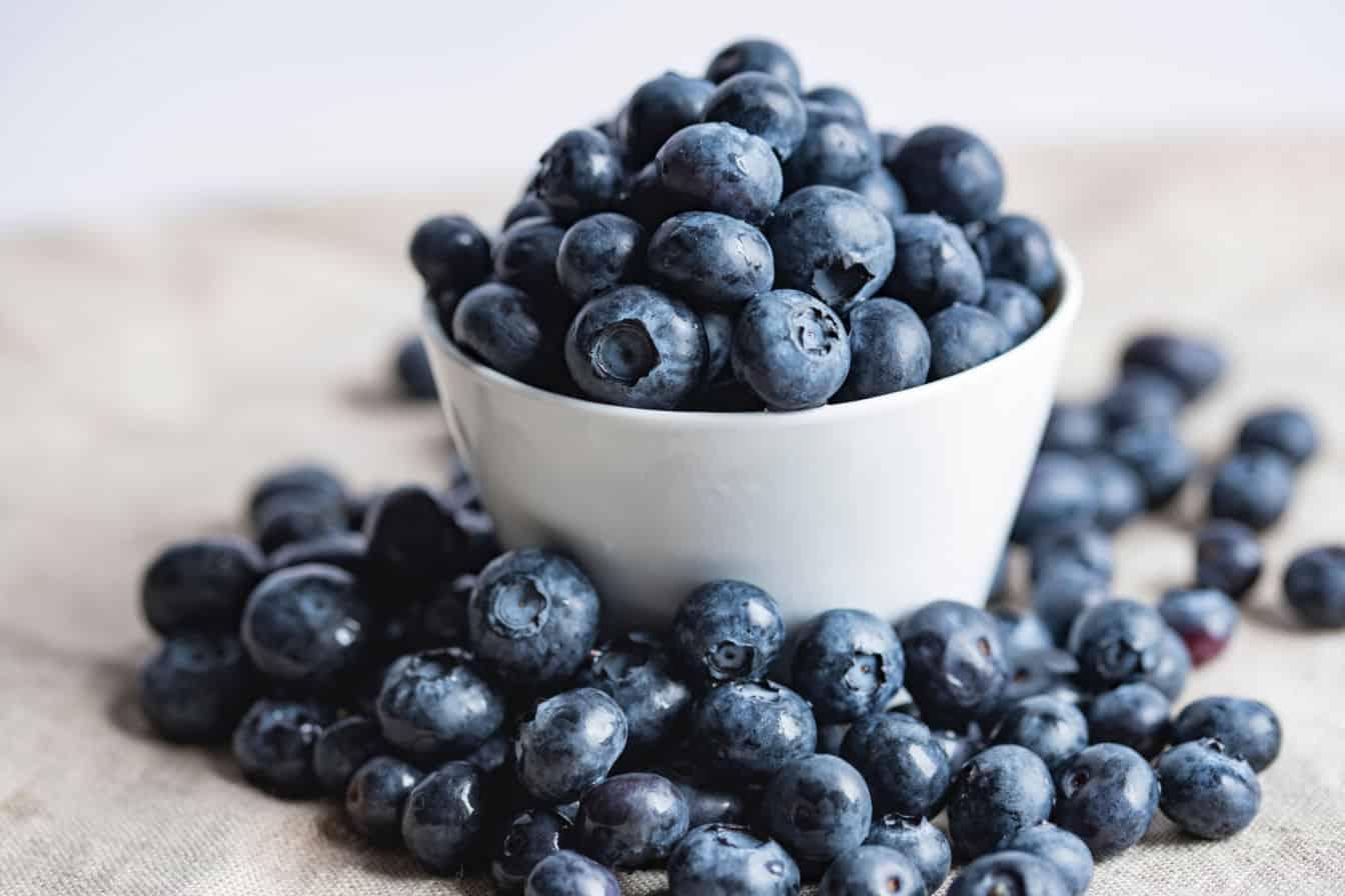 Blueberry and Saskatoon recipes
