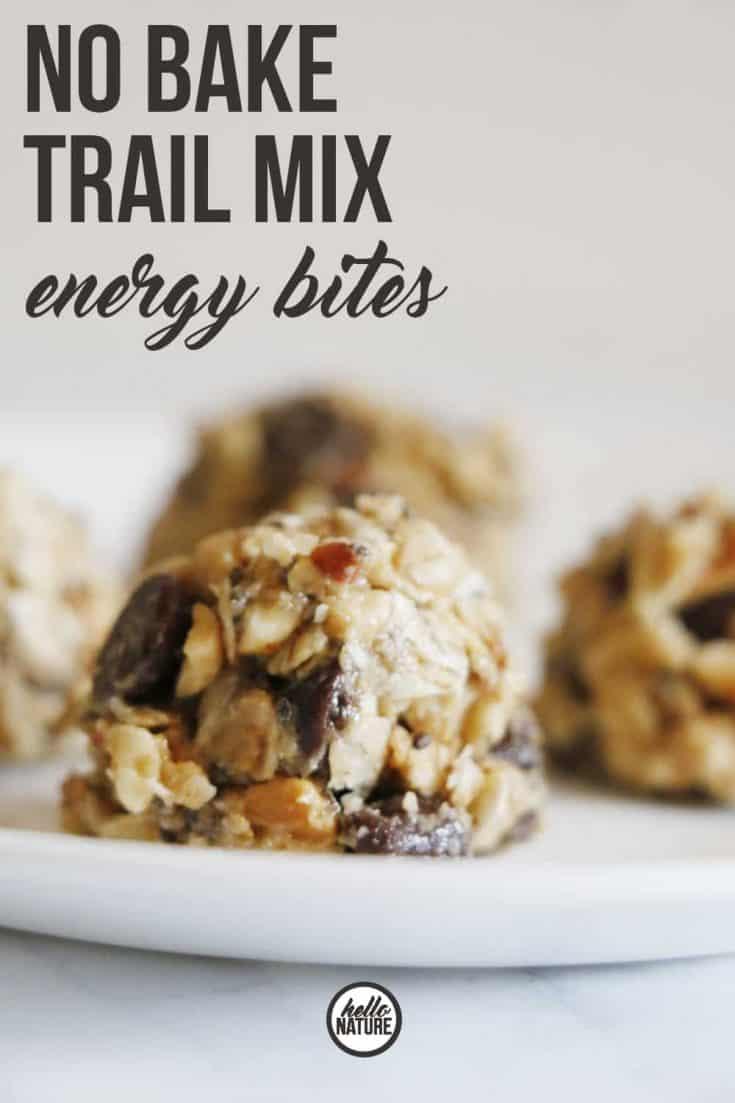 No Bake Trail Mix Energy Bites