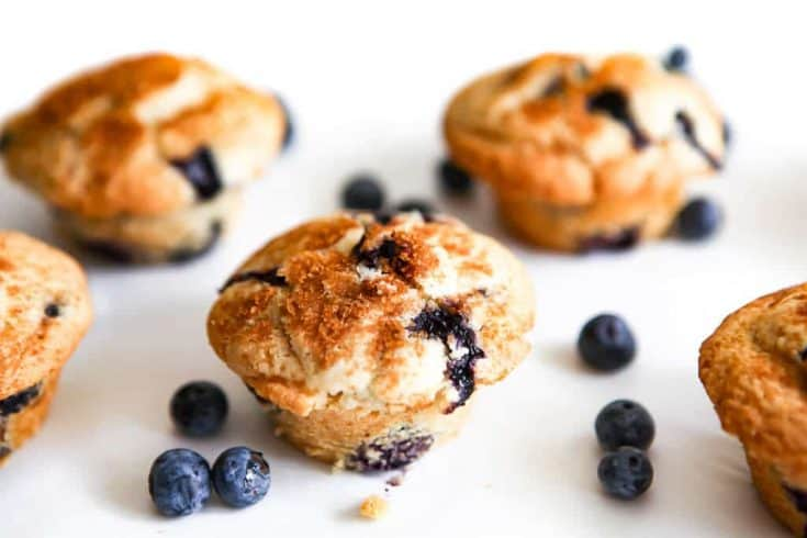 The Best Vegan Blueberry Muffins!