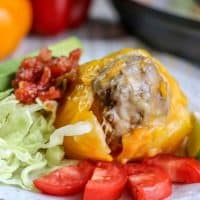 Instant Pot Mexican Stuffed Peppers