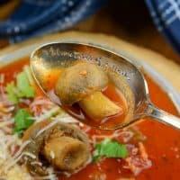 Instant Pot Italian Mushroom Stew