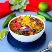 Easy, Instant Pot Chicken Tortilla Soup