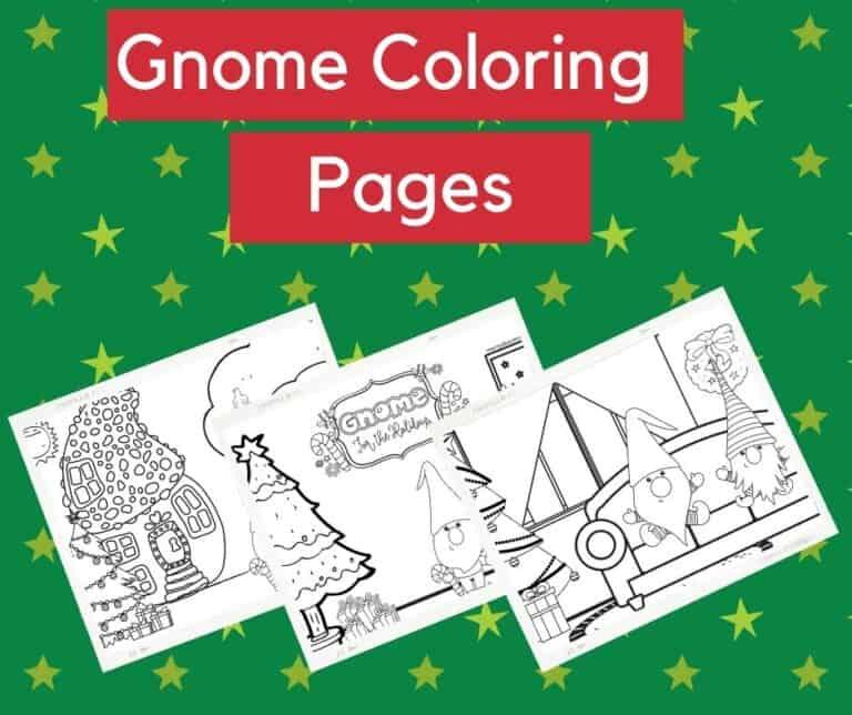 Gnome header photo