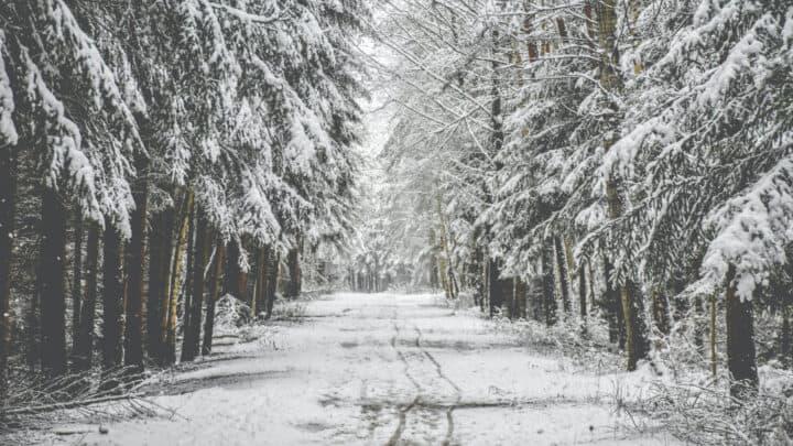 Outdoor in Winter